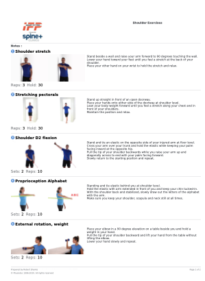 10 OF THE BEST SHOULDER EXERCISES: To Treat and Prevent Pain, Impingement and Rotator Cuff Problems